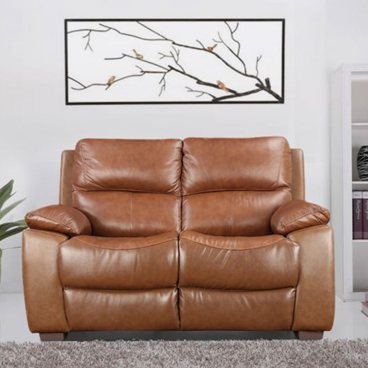 Lionel Half Leather Two Seater Sofa in Brown Colour by HomeTown