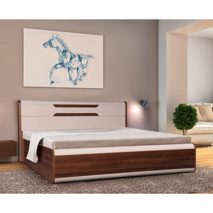Canterbury Engineered Wood Queen Size Bed with Box Storage in Fortune Walnut Colour