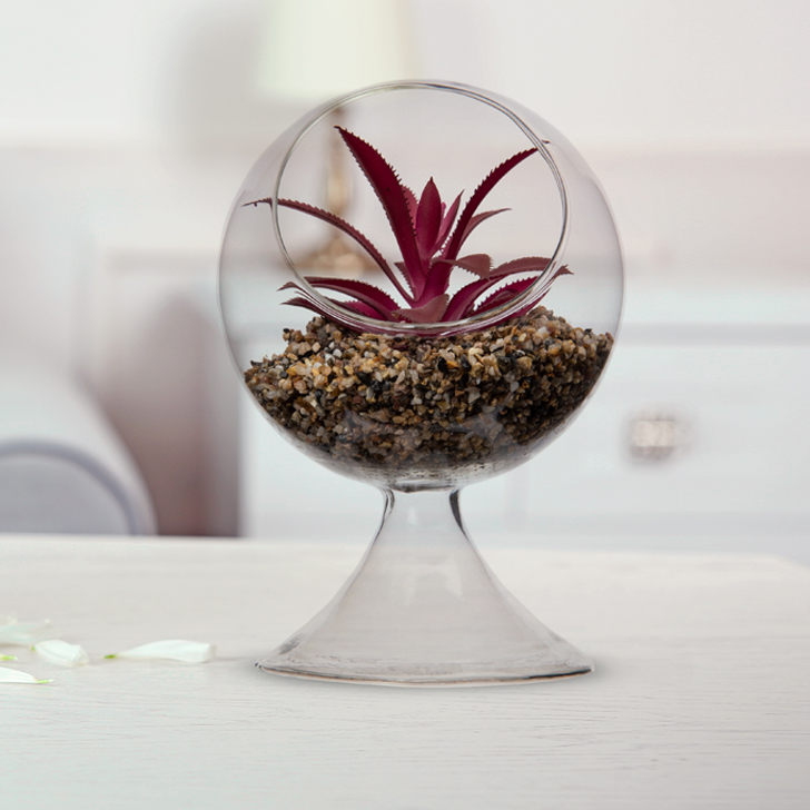 Stark Plant In Glass Stand Glass Artificial Flowers in Transperant Colour by Living Essence