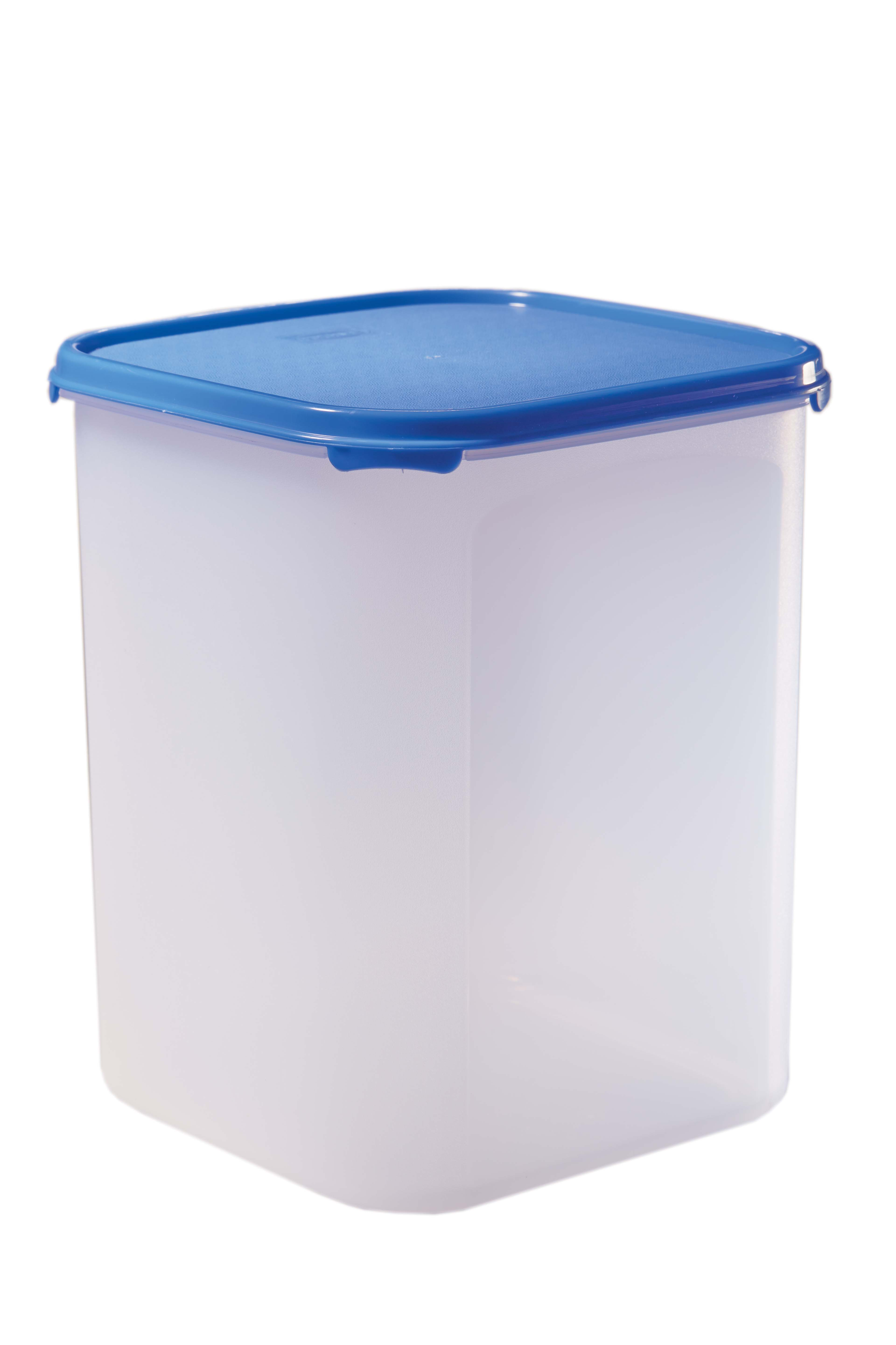 Magic Seal Polyproplene Thermoware in Transparent With Blue Lid Colour by Living Essence