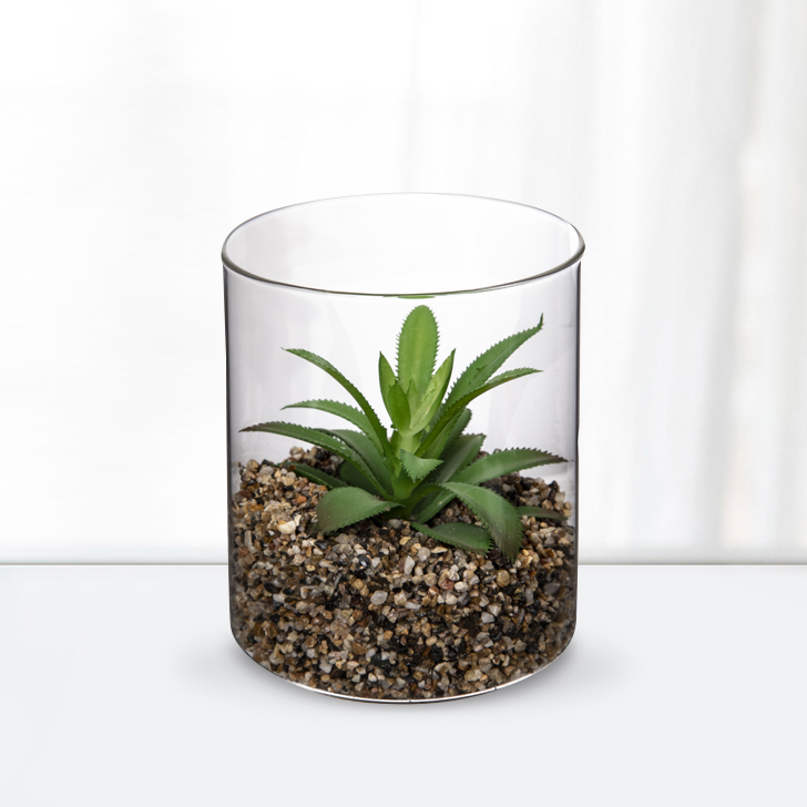 Stark Plant in  Beaker 12Cm Glass Artificial Flowers in Transperant Colour by Living Essence