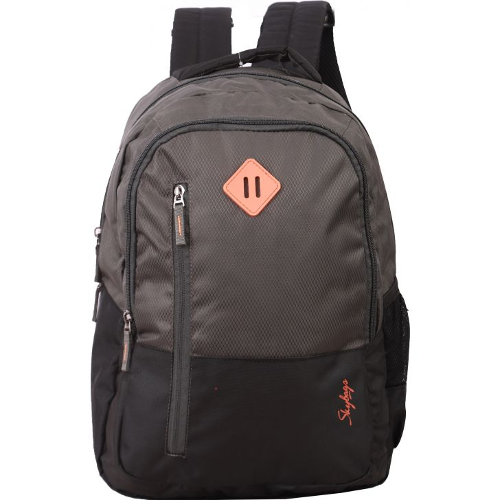 Skybags Arthur Laptop Backpack (Grey)
