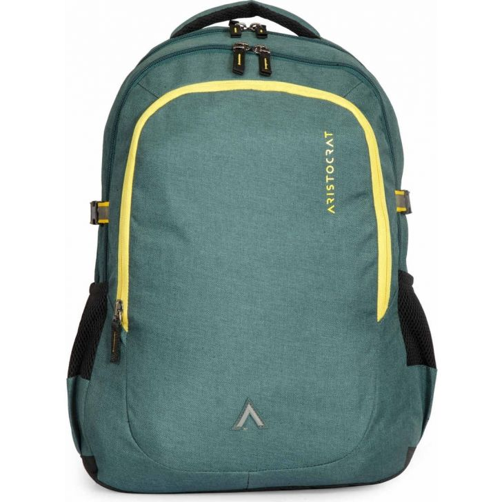 Grid 1 Polyester Laptop Backpack in Green Colour by Aristocrat
