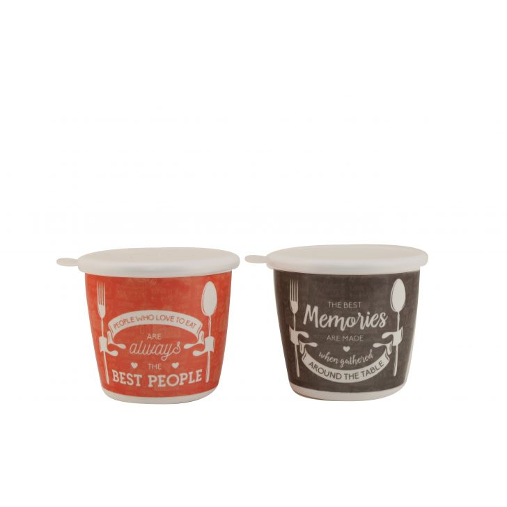 Foodaholic Jars Set Of 2 Food Grade Melamine Containers in Grey & Orange Colour by HomeTown