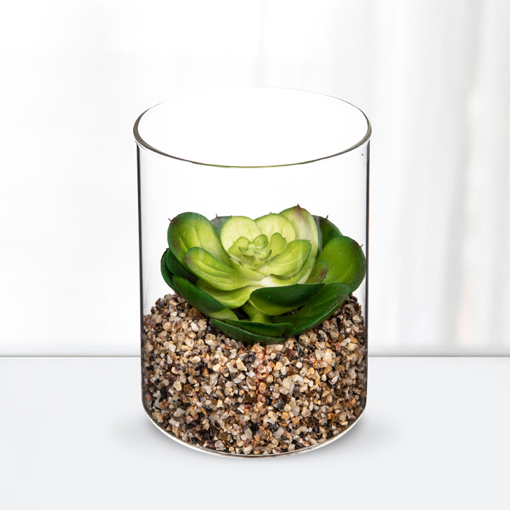 Stark Plant in Beaker 12 Cm Glass Artificial Flowers in Transperant Colour by Living Essence