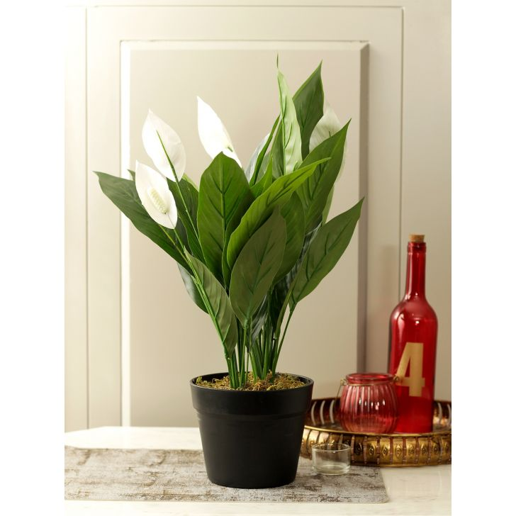 Elena Polyresin Artificial Plant in Green Colour by HomeTown