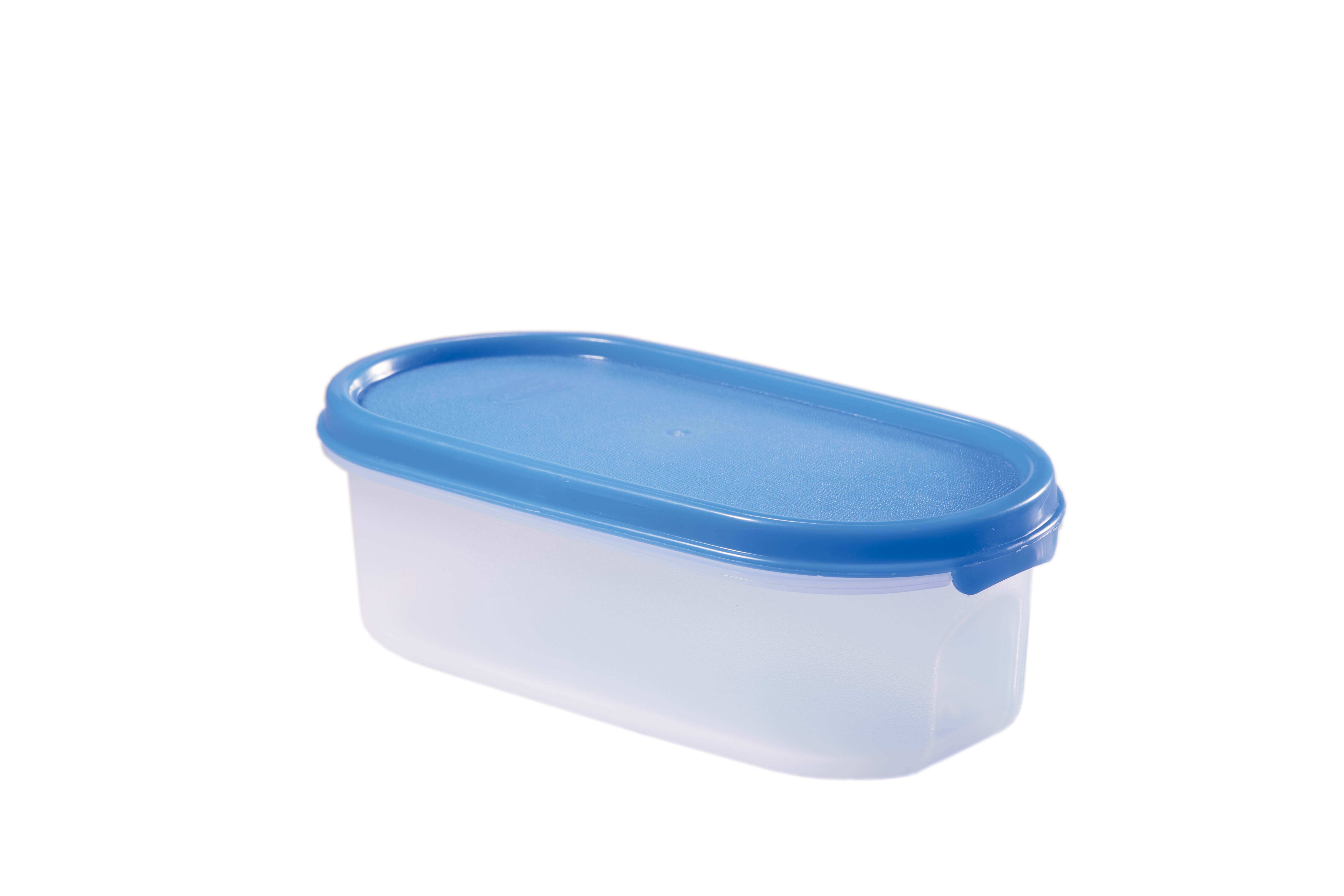 Magic Seal Oval 0.5 Blue Polyproplene Containers in Transparent With Blue Lid Colour by Living Essence