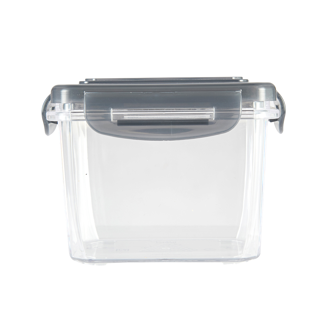 Clara Tritan Container 300 Ml Tritan Containers in Transparent Container With Grey Lid Colour by Living Essence