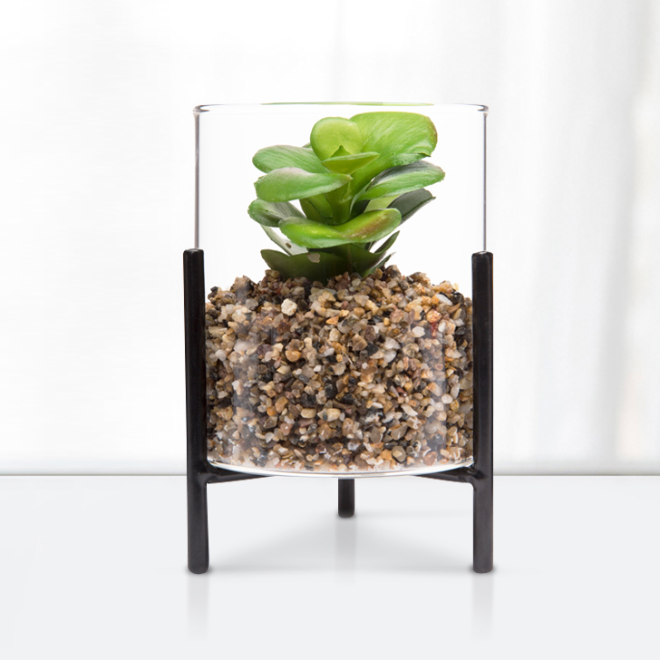 Stark Stand Terrarium Glass Artificial Flowers in Transperant Colour by Living Essence
