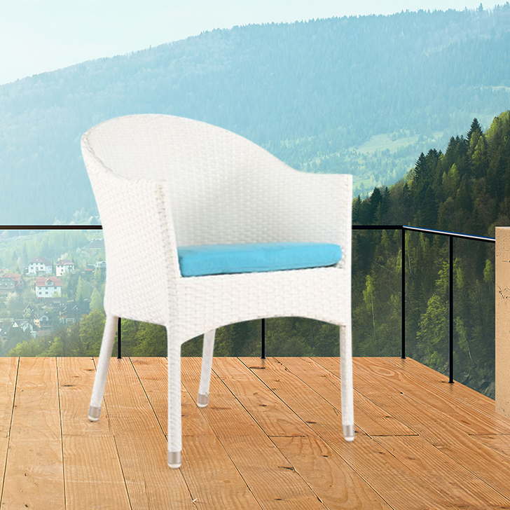 Canna Polyurethane Outdoor Chair in White & Blue Colour by HomeTown