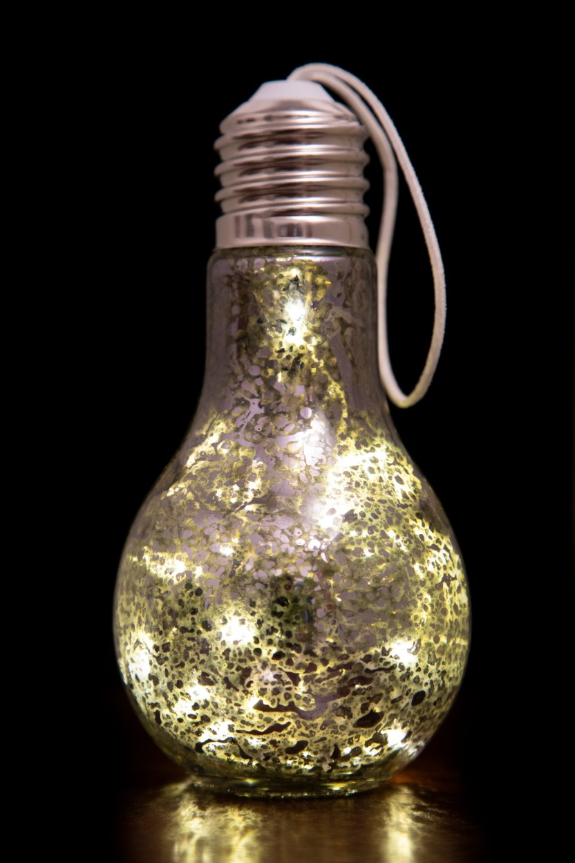 AW17 VENUS SHINE LIGHT BULB SLV Glass Accent Lighting in Silver Colour by Living Essence