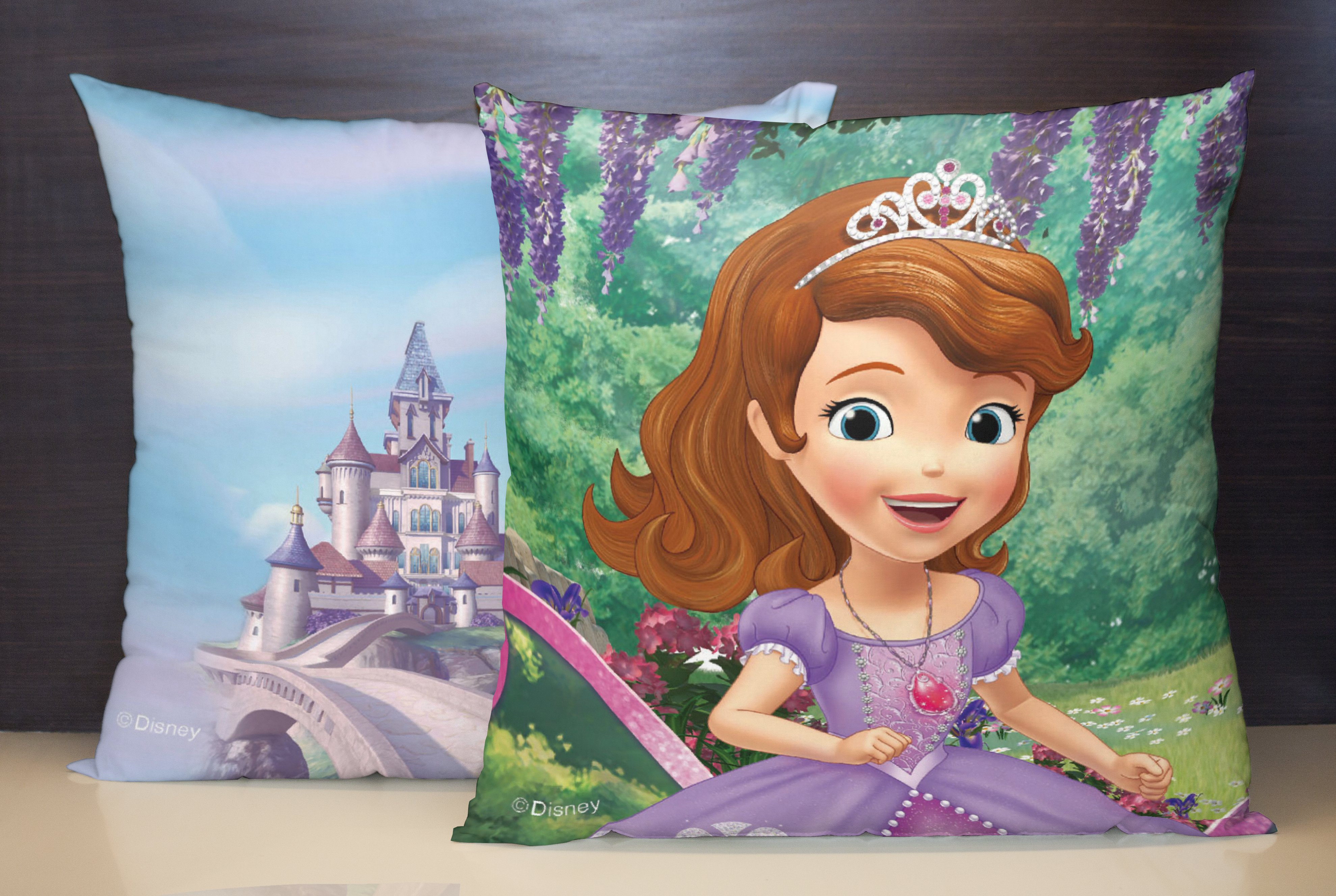 Spaces Disney Sophia Reversible Green Cover Set Of Cotton Cushion Covers in Green Colour by Spaces
