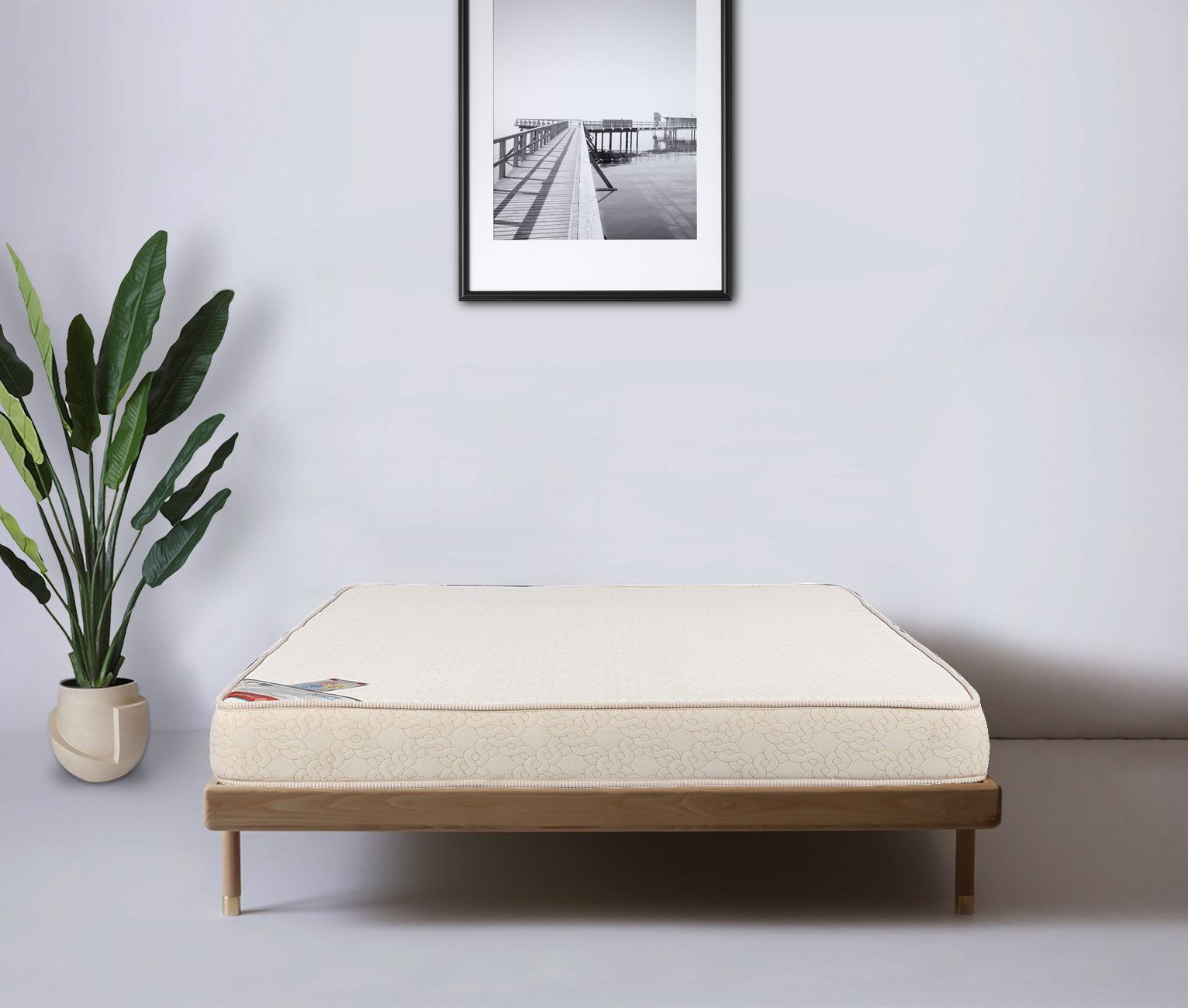 Spinepro Coir & Foam Queen Bed Mattress (78*60*5) in Cream Colour by HomeTown
