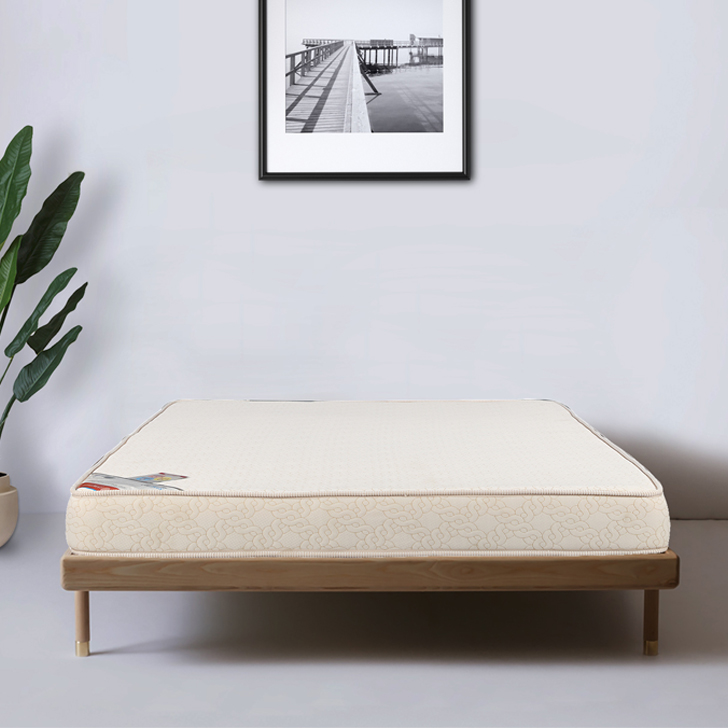 Mattress Spinepro Coir & Foam Queen Bed (78*60*5) in Cream Colour by HomeTown
