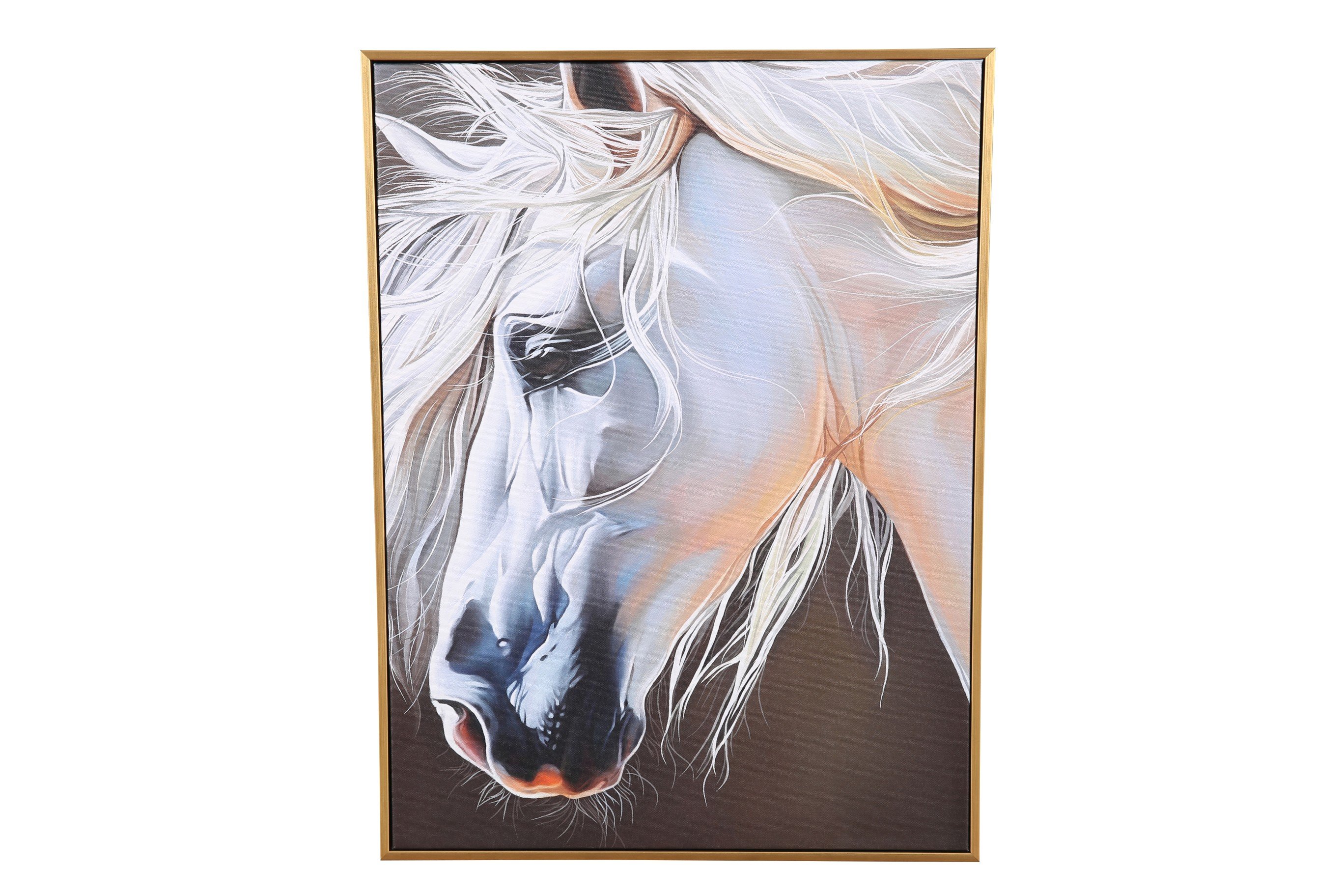 Hayden White Horse 43X58Cm Painting Canvas Paintings in MULTICOLOUR Colour by Living Essence