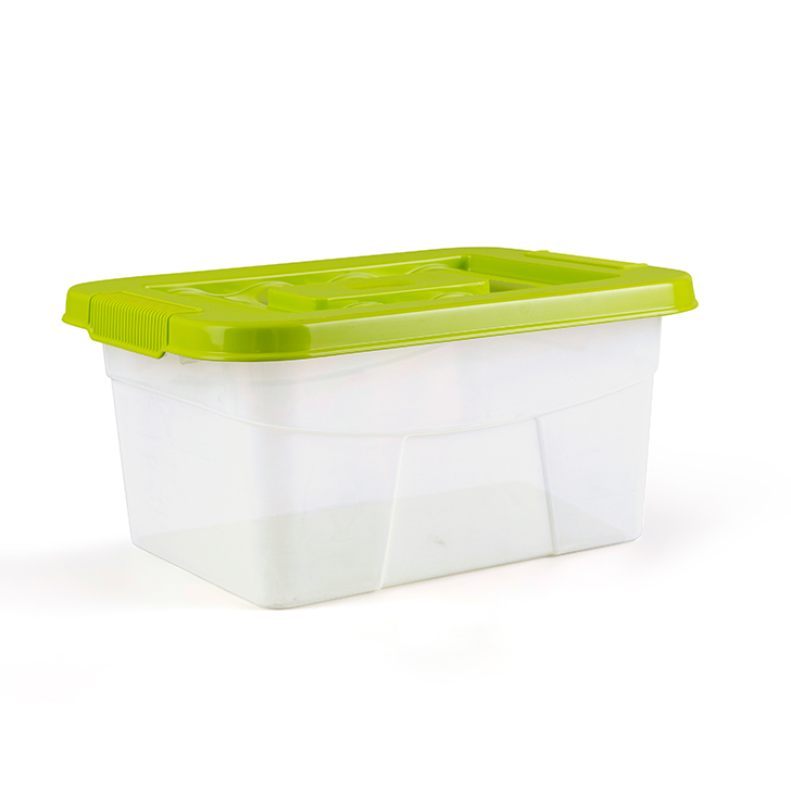 Living Essence Plastic Containers in Green Colour by Living Essence