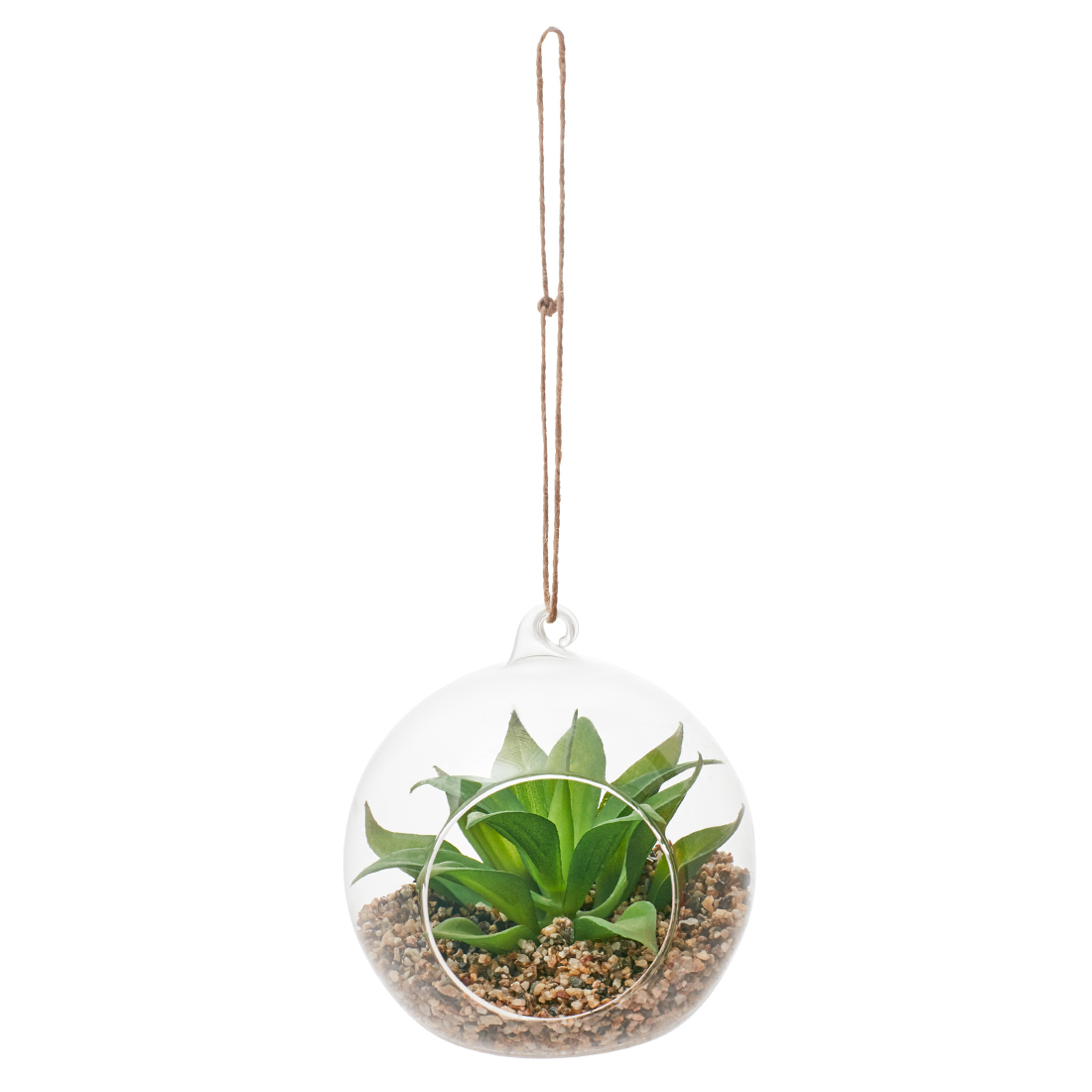Stark Plant In Dome Small Artificial Plants in Transparent Colour by Living Essence