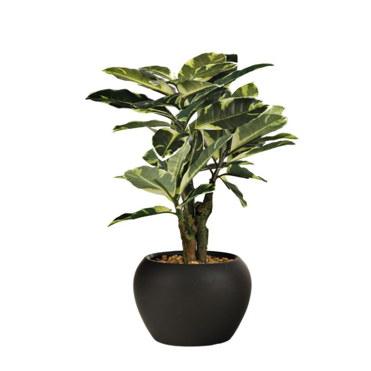 Sage Fabric And Plastic Artificial Plants in Green Colour by Living Essence