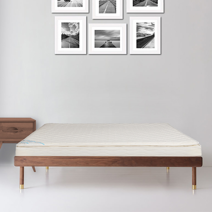 Mattress Daphne Pillowtop Bonnell Spring King Bed (78*72*6) in Off White Colour by HomeTown