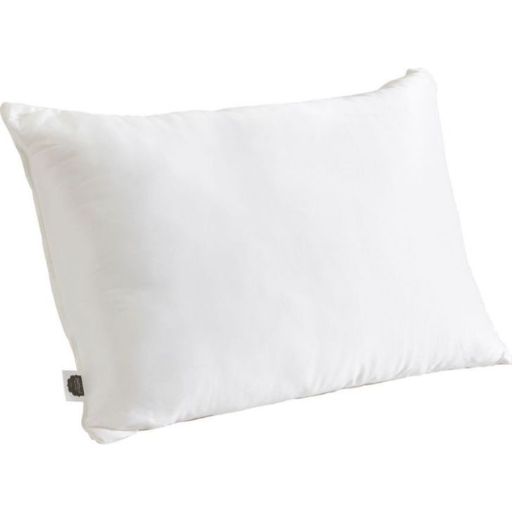 Portico New York Micro Fibre Pillow Pillow 69 cms x 46 cms in White Color by Portico