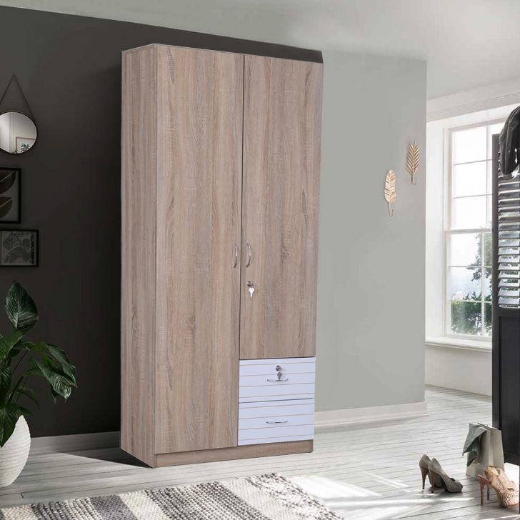Molly Engineered Wood Two Door Wardrobe in Multi Color Color by HomeTown