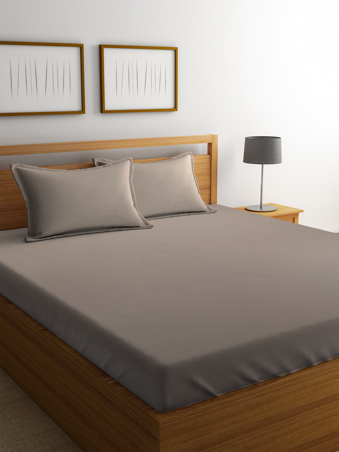 Portico Supercale Bedsheet Latte Cotton Double Bed Sheets in Brown Colour by Portico