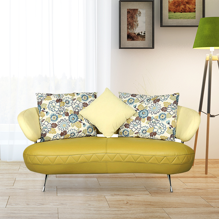 Noble Half Leather Two Seater sofa in Green Colour by HomeTown
