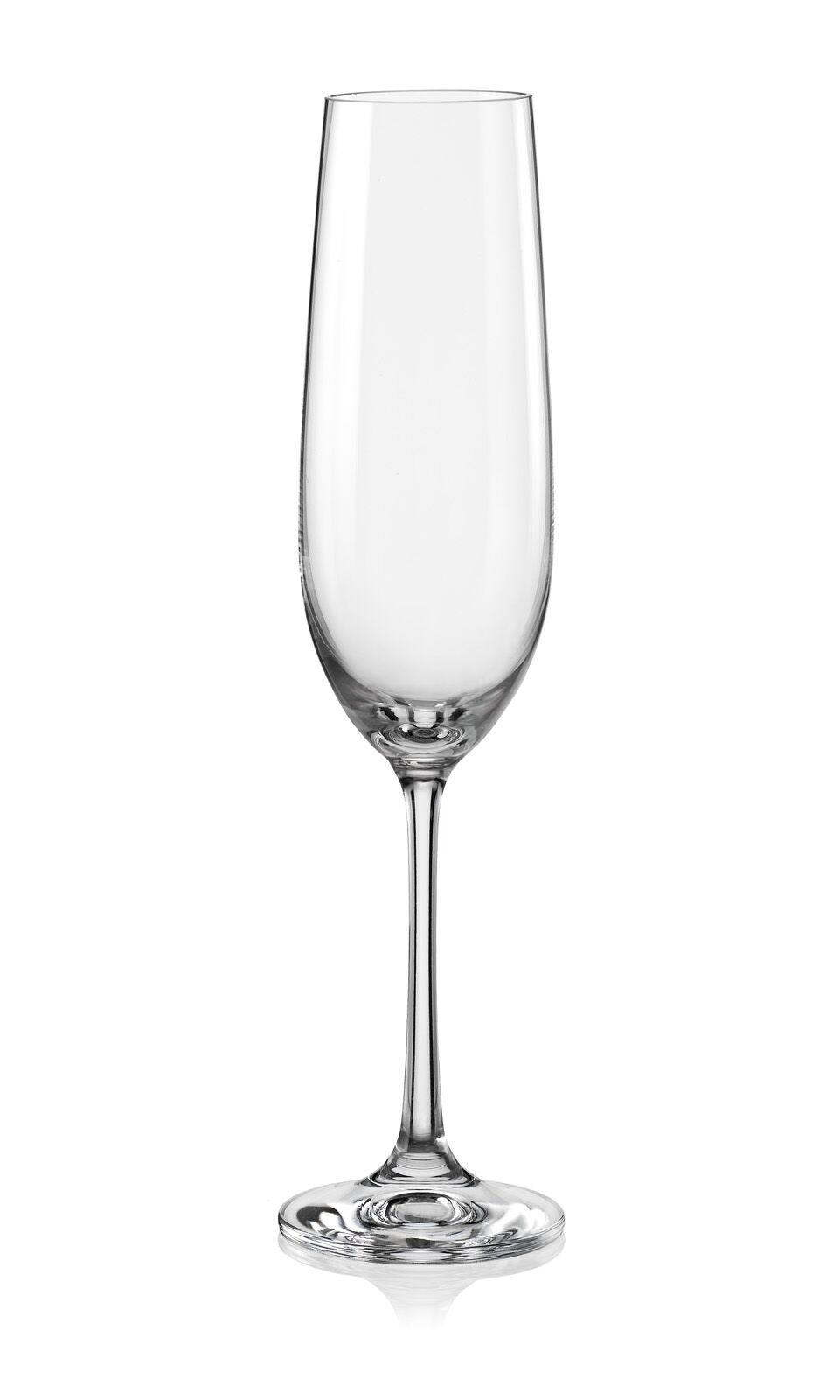 Bohemia Crystal Viola Champagne Flute 190ml set of 6 pcs Bar Glassware in Transparent Colour by Bohemia