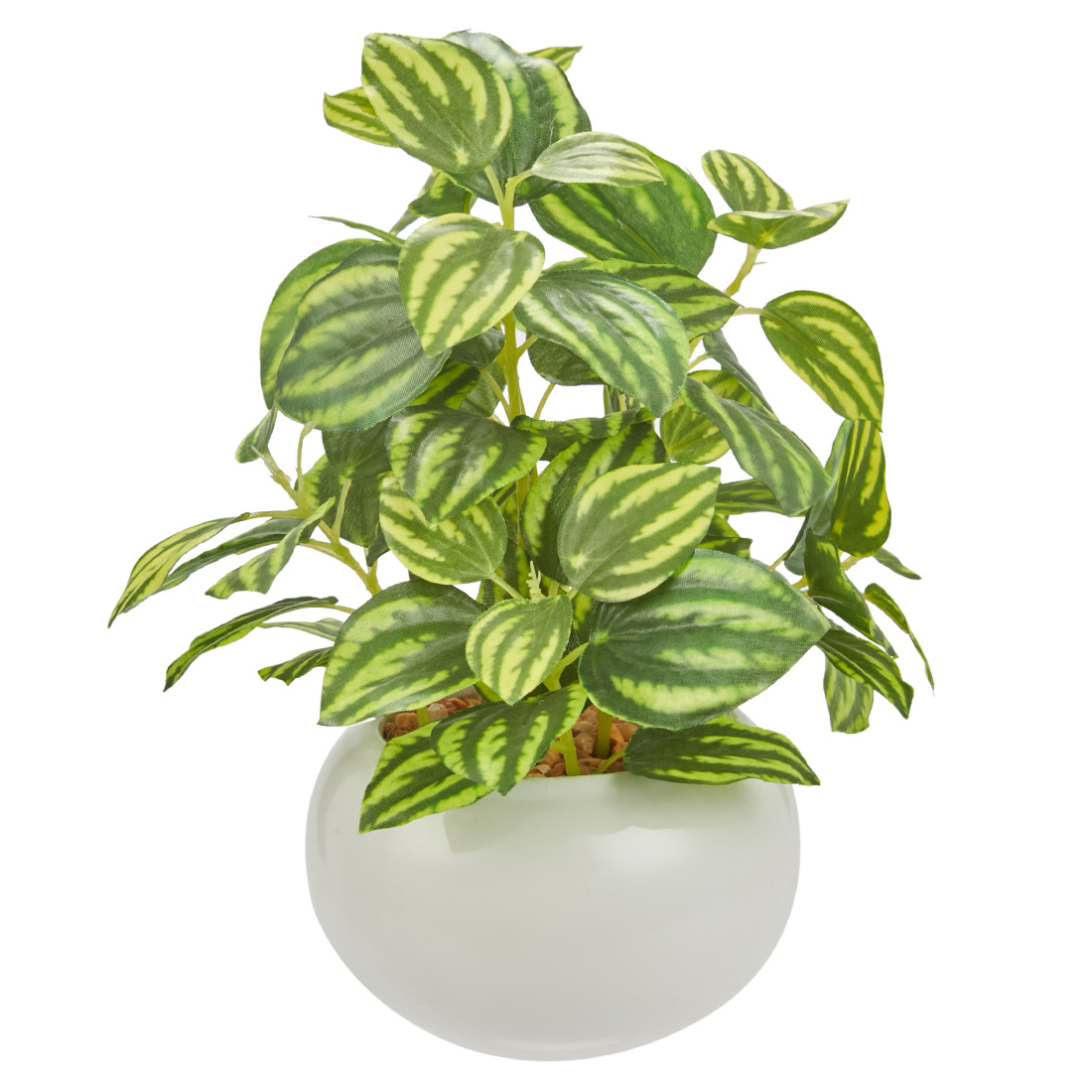 Sage Sandersii Plant 17 Cm Artificial Plants in Green Colour by Living Essence