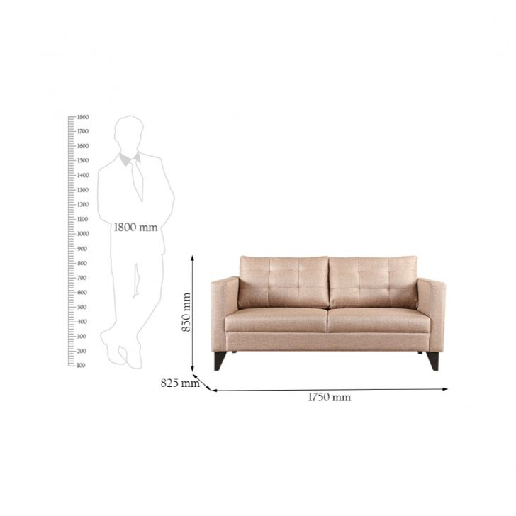 Belgrade Fabric Two Seater sofa in Golden Colour by HomeTown