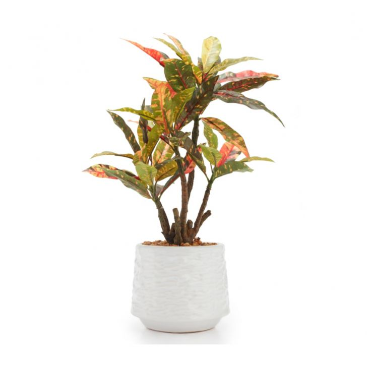 Sage Croton Large Wax Artificial Plants in Multicolor Colour by Living Essence