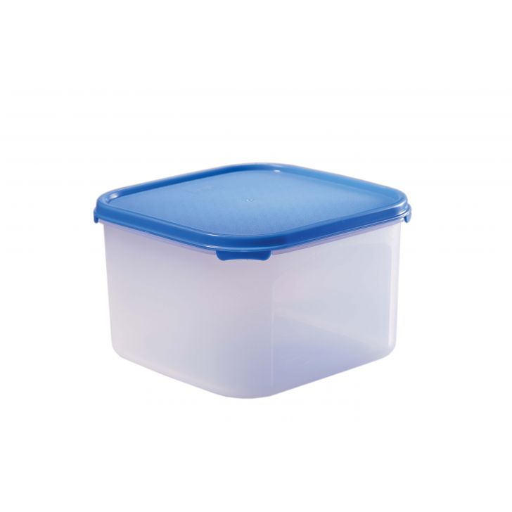 Magic Seal Polyproplene Containers in Transparent With Blue Lid Colour by Living Essence